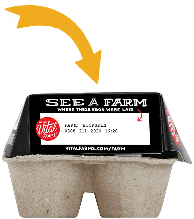 A photo of an egg carton with the See A Farm Buckskin Acres code on the side.